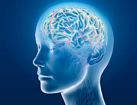 mind-head-left